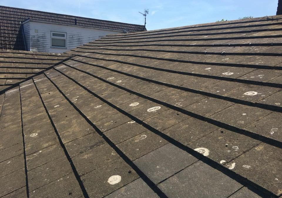 Full Roof De Moss H2o Cleaning Service Pressure